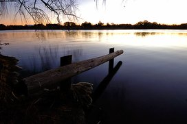 Picture_88