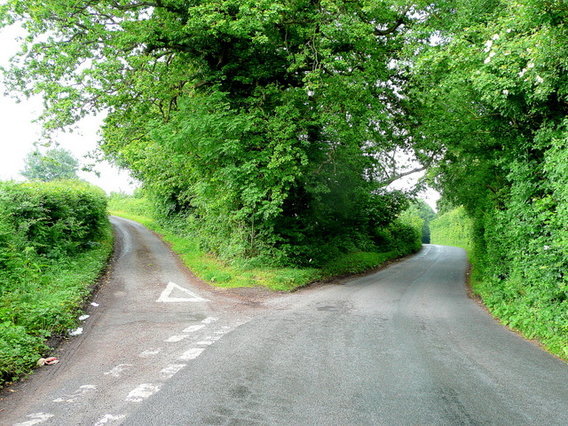 Fork_in_the_road_-_geograph.org.uk_-_1355424