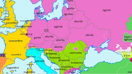 Cropped_cucumber_mappe