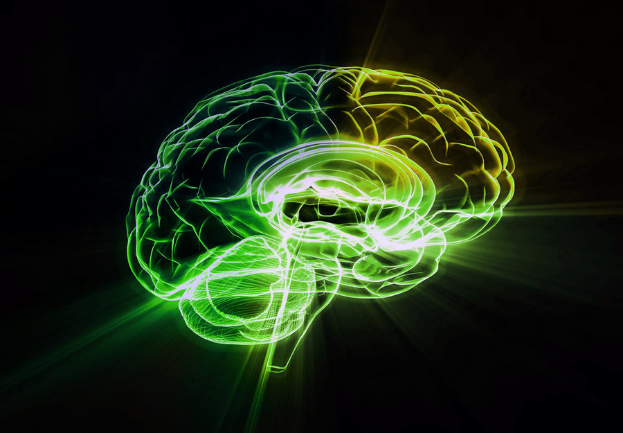 Neuroplasticity and Exercise Will Keep Your Brain Young and Spry