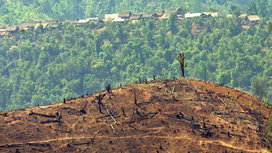 Deforestation_in_burma1