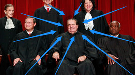 Scalia_arrows