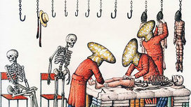 Codex-seraphinianus-1_copy