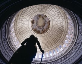U.s._capitol_dome__washington__d.c.