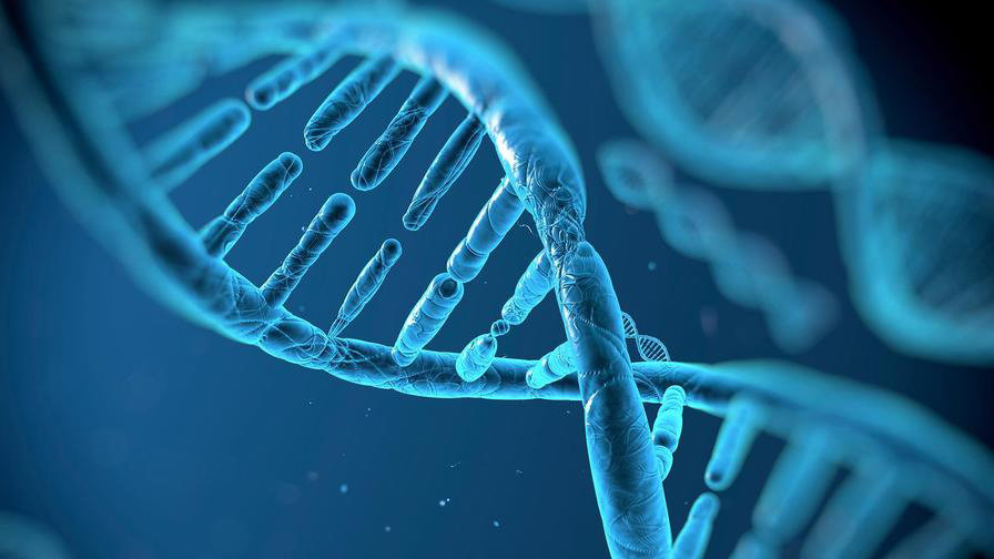 How Genetic Engineering Via CRISPR Will Change Our Lives
