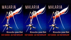 Malaria_posters_final