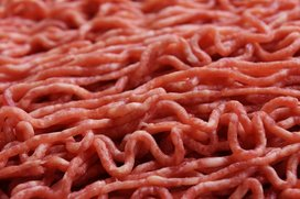 Minced-meat-1747910_1920