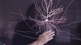 Hand-and-neuron