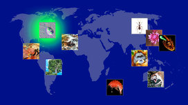 New_species_map-2