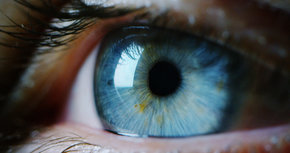 Big-think-blue-light-eye-cells1