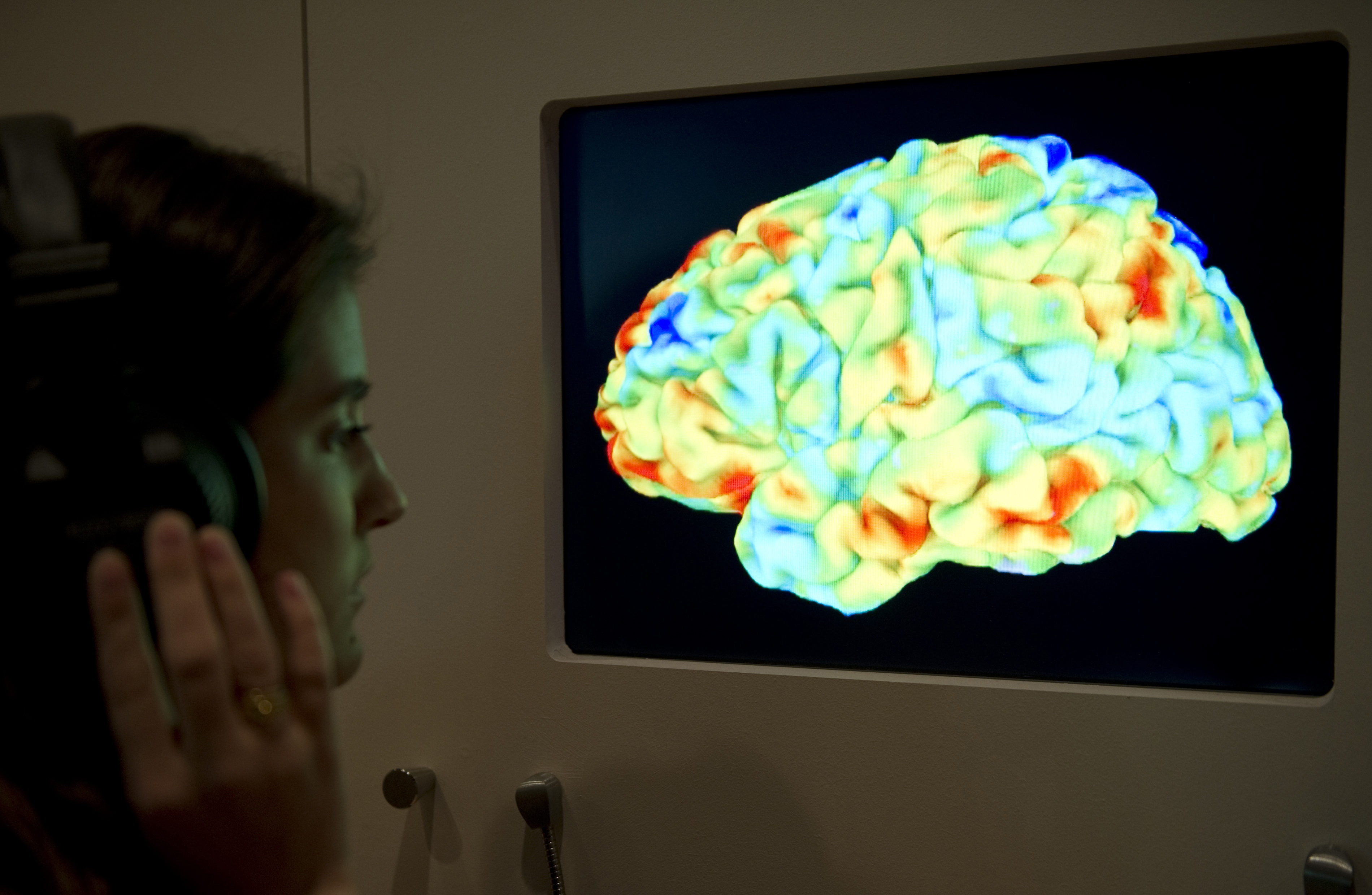 how different are men s and women s brains big think researcher evaluates a brain scan