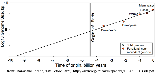 Evolution and Moore's Law