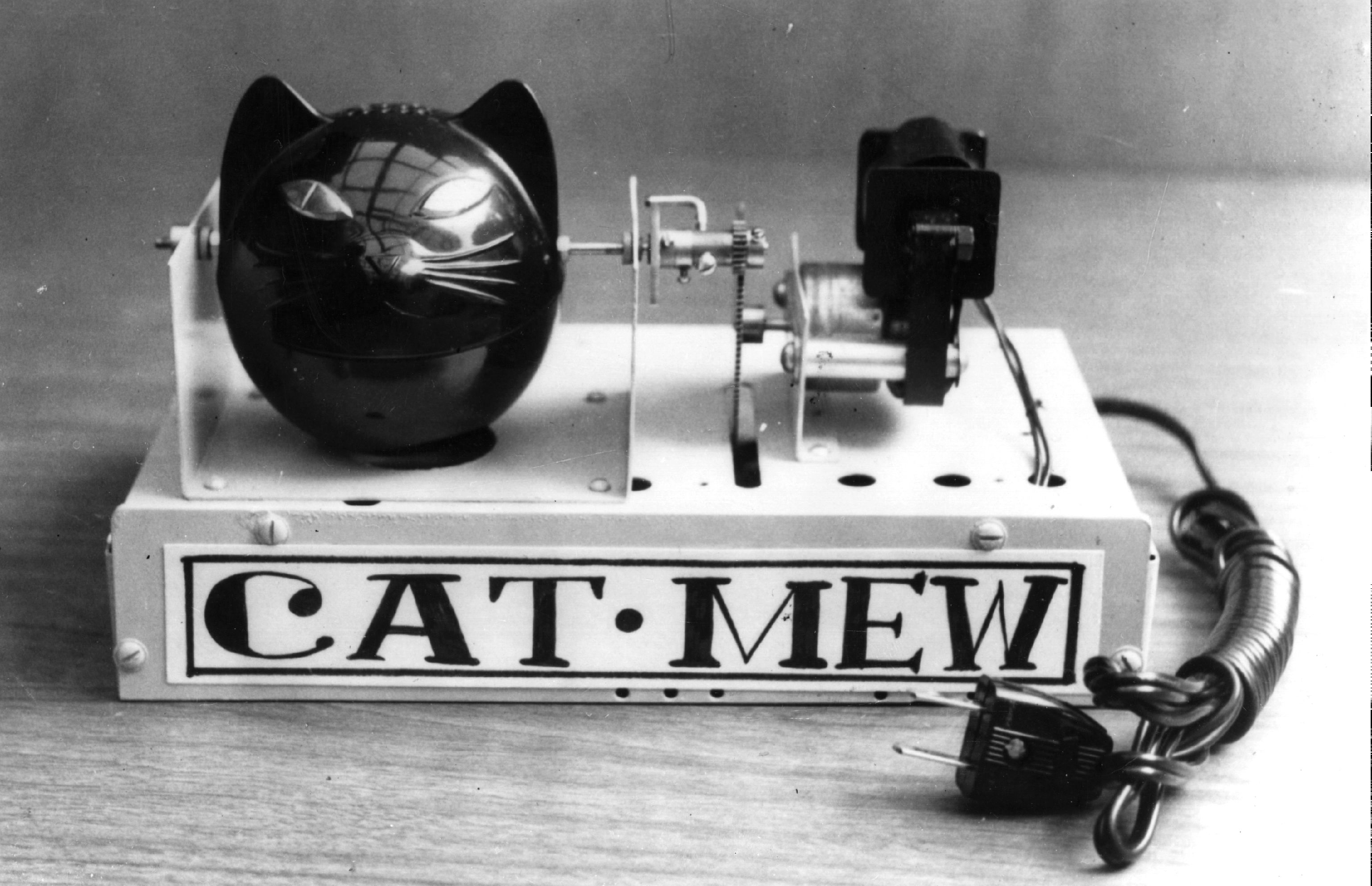 cat meow device