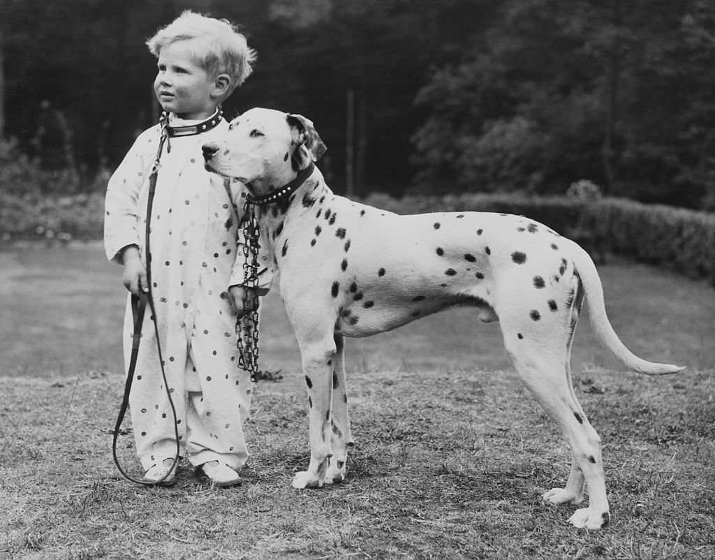 Boy with dog (Credit: Getty Images)