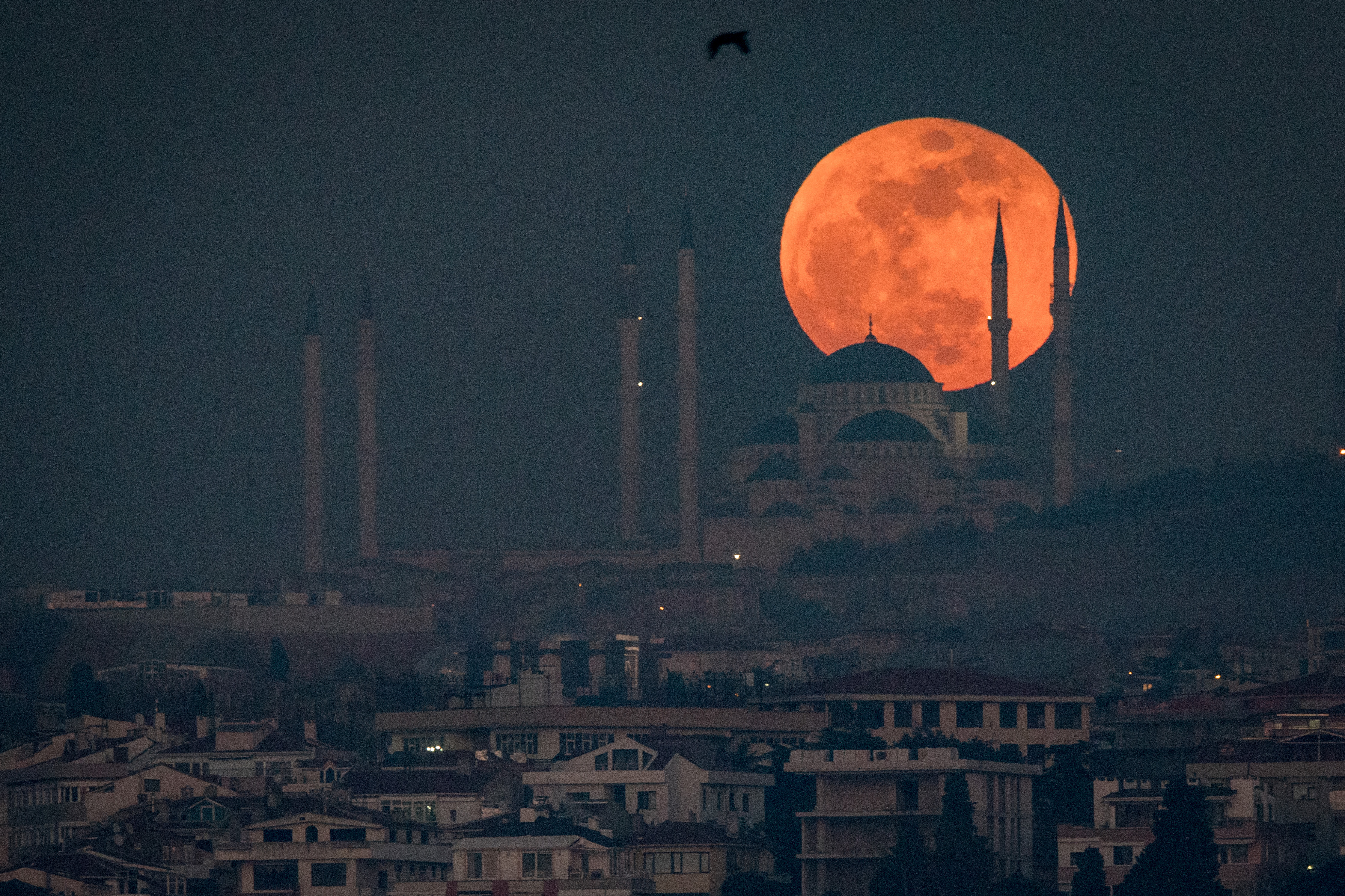 red moon on friday - photo #41