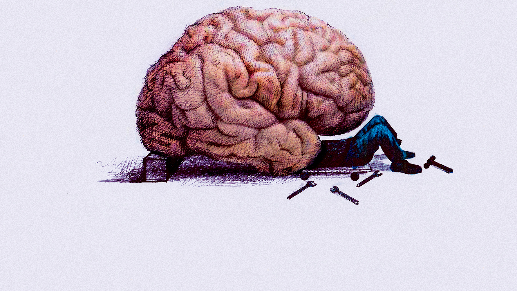 Learning And Memory In The Brain How Science Cracked Your Minds